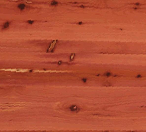 cedar sample